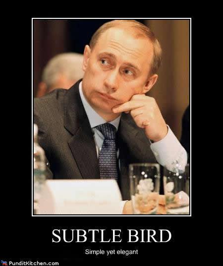 vladimir-putin-meme-subtle-bird