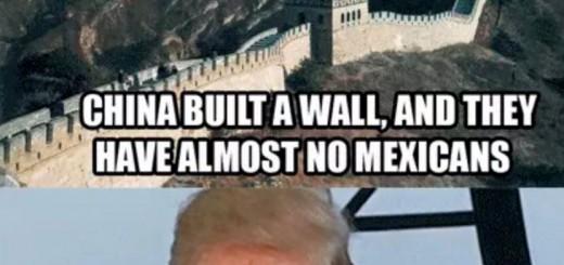 Trump Wall Meme